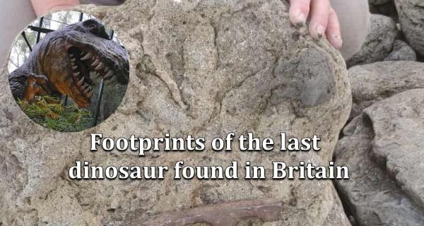 Dinosaurs-Footprint