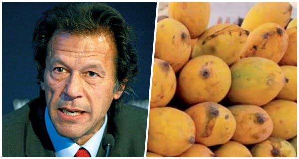 pakistan-mango