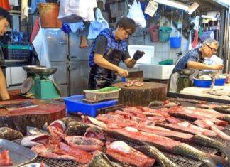 Hong Kong sea foof market