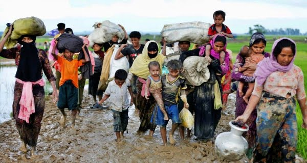 Rohingyas have entered India